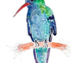 "Hummingbird 20"" x 16"" Watercolour print"
