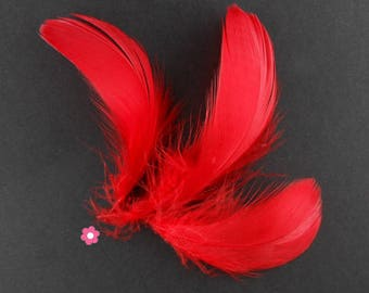 x 10 4 to 10cm red goose feathers
