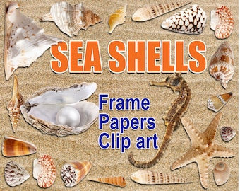 Digital Sea Shells Clipart, Frame, Papers, printable Digital Scrapbooking, Seaside Clipart, Marine Digital Collage, Instant Download, clip11