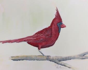 Cardinal Original Watercolor1