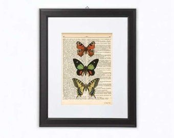 Butterfly print-insect print-butterfly wall art-botanical print-home decor-insect wall art-butterfly dictionary print-by NATURA PICTA-NPD096