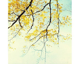 Abstract Photography,  Nature Photography, Asian Inspired Art, Yellow Wall Art, New England Art, Autumn Landscape