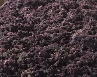 Raw Purple Irish Moss Wild-Harvested