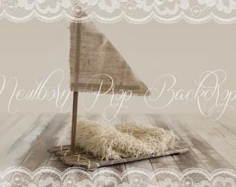 Newborn Digital Backdrop (raft)