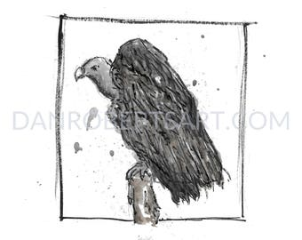 100 Animals, 100 Days: 70/100 The White-Rumped Vulture DIGITAL FILE