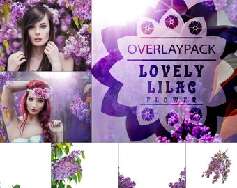 Lovely Lilac - 30 Flieder Overlays