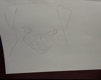 drawing number 3 of a dog