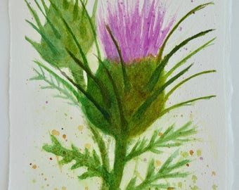 Small Scotch Thistle Original Watercolor Painting