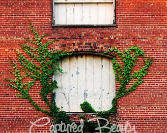 Old Warehouse Photography, Vines, Abandoned Architecture, Photography, Print, Vines growing on building