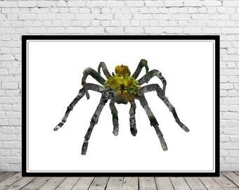 Spider, Tarantula, spider tarantula, tarantula print, arthropod wall art, watercolor arthropod, watercolor tarantula (3018b)