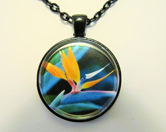 BIRD of PARADISE Necklace -- Tropical splendour, Natural beauty, Friendship token