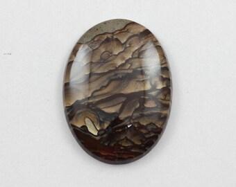 Picture Jasper Cabochon 30x40 Oval Deschutes Oregon Biggs Jasper L13 Vintage Hand Cut Agate