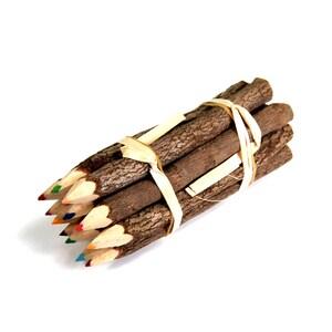 Branch Pencil Bundle 5 Inch Lengths 1 Dozen Colored Pencils Novelty Decorative