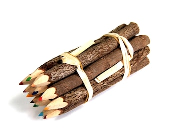 Branch Pencil Bundle 5 Inch Lengths 1 Dozen Colored Pencils Novelty Decorative