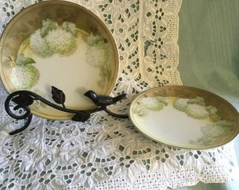 Pair of hand-painted plates with hydrangeas - marked Germany
