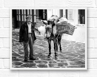 Paros Greece digital download photography, digital download, donkey print, black and white photography printable, travel prints, Greek decor