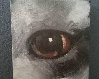 Marion Radow Canvas Print - Limited Edition - 1/100 - Horse Eye