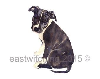Watercolor DOG painting, Staffy painting, watercolor animals, 8x10 print, ready to frame