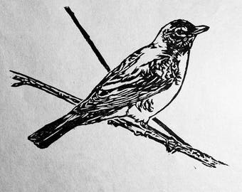 "American Robin, hand carved woodblock print, 5""x7"""