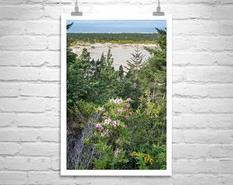 Oregon Coast Photograph, Vertical Wall Art, Oregon Art Print, Oregon Nature Photography, Oregon Dunes, Pacific Northwest, Oregon Gift