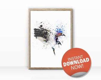 landing bird illustration, animal portrait, download now