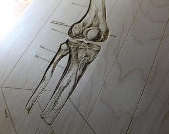 Personalized Human Bones Cutting Board, Knee, Vintage Anatomy, Orthopedic Surgeon, Orthopedics Nurse, Doctor Gift, Skeleton, Physician Gifts