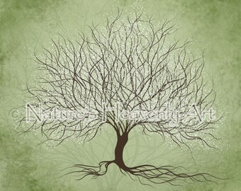 Nature Green Wall Decor for Home, 8 x 10 Print Tree Wall Art for House Decor, Winter Tree Art Print  (325)