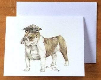 Scholarly Bulldog
