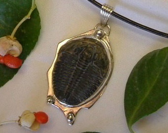 """Trilobite Necklace Fossil Cheeks Utah Natural Fossil Handmade One of a Kind Sterling Silver and 18"""" Leather Necklace Cord Black   369 G"""