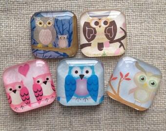 Owl Magnets, Glass tile magnets, Owl decor, Refrigerator Magnets, Office decor, Fridge magnets, Locker magnets, Cubicle decor, Teacher Gift