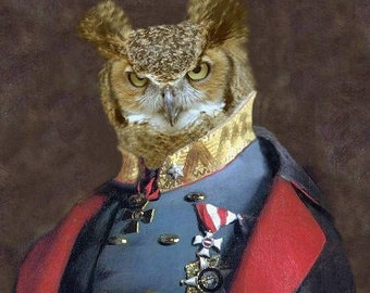 "Captain Strigiformes - 24"" X 36"" Fine Art Print"