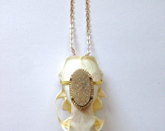 Real Mink Animal Skull Necklace With Gold Gemstone Handmade Taxidermy Oddities