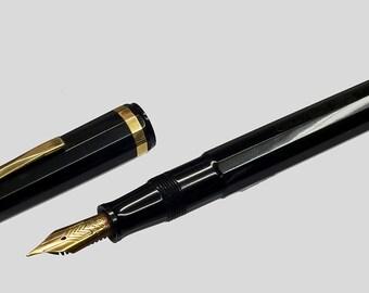 Penna stilografica OMAS- EXTRA 556F