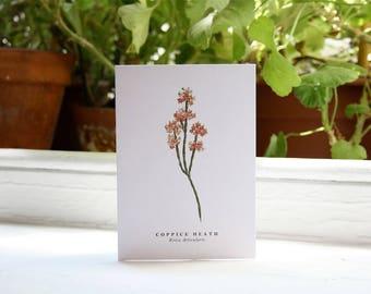 Coppice Heath: Greeting Card