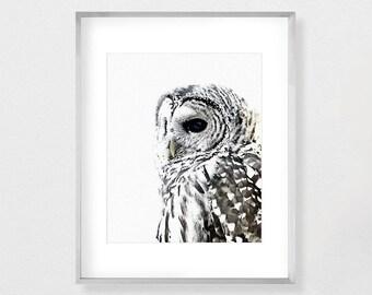 Owl Art, Woodland, Owl Painting, Owl Watercolor, Watercolor Print, Owl Print, Printable, Instant Download, Watercolor Art, Animal Art