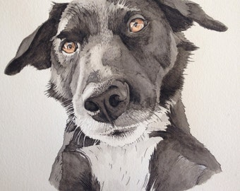 Custom Pet Portraits Watercolor Painting Drawing