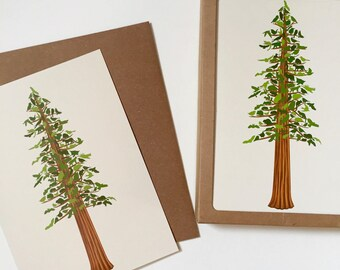 Redwood Forest Blank Card Box of 6 Recycled