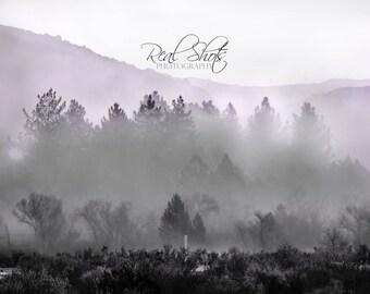 Misty berg mist