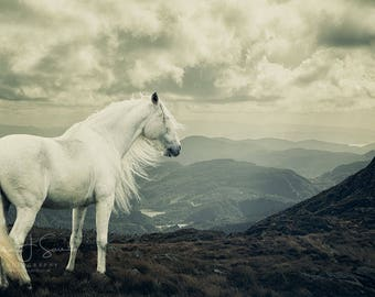 White Horse | Fine Art Photography | Mountains | Blue Print | Horse Photography | Equine Fine Art Print | Wall Art | Home Decor | Fine Art