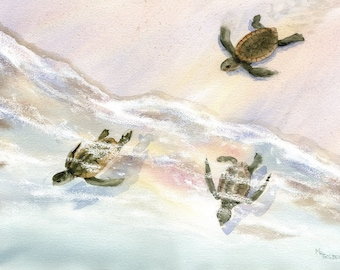 Wait for Me baby sea turtles rush to the ocean