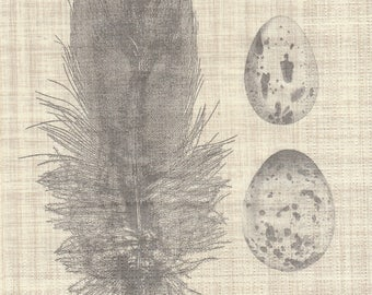 EGG and feather pattern X 2 in paper towel 472