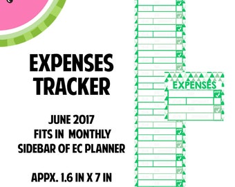 JUNE 2017 Monthly Bill / Expense Tracker Stickers | Vertical Color Palette | LB142
