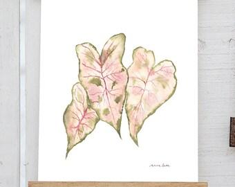 Calladium Leaves Watercolor Print, Tropical Leaves, Tropical Plant Art