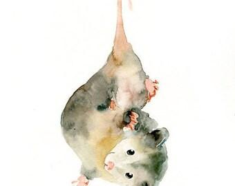 OPOSSUM-8x10inch print-Art Print-animal Watercolor Print-nursery decor-children art-home decor