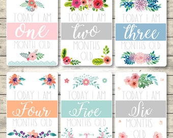 Flowers Printable Baby Monthly Milestone, Milestone Cards, First Year Cards, Baby Shower Gift, Instant Donwload