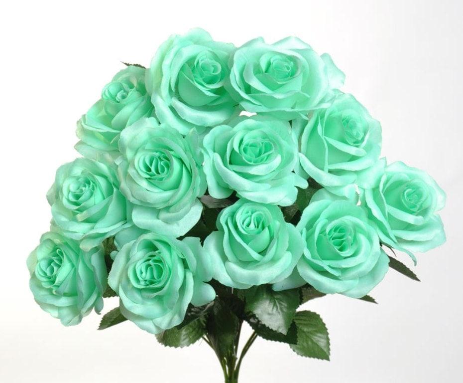 Silk mint rose bush 12 mint roses 35 in diameter zoom mightylinksfo Images