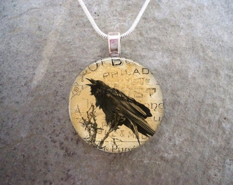 Crow Jewelry - Bird Jewellery - Glass Pendant Necklace - Raven 9