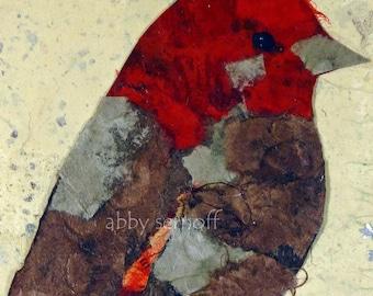 House Finch Bird Art Fine Art Giclee Print