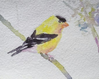 original watercolor painting ACEO yellow finch bird,2.5x3.5 inches