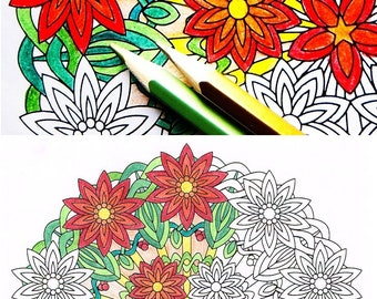 Mandala Coloring Page - Flower Burst - instant download art to print and color